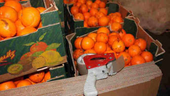 'Cigs in fruit' smugglers jailed