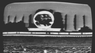 Pressbild The Realism Question: Ion Grigorescu, Den stora demonstrationen den 23 augusti, befrielsens minnesdag, 1974 (1)