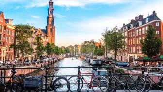 3. Amsterdam – för långpromenad-hunden