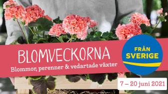 Under Blomveckorna Från Sverige får vi hela Sverige att blomma med Från Sverige-märkta sommarblommor, perenner och plantskoleväxter. Märket Från Sverige på en växt betyder att den är odlad, skördad / hanterad, förpackad och kontrollerad i Sverige