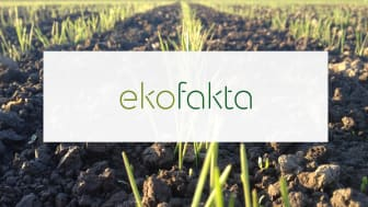 Ekofakta.se en webbportal om ekologisk produktion och ekologisk mat.