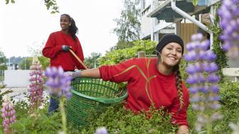 Stena Fastigheter prisas som Årets Mångfaldshjälte i Malmö