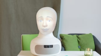 Tengai - the worlds first unbiased social job interview robot