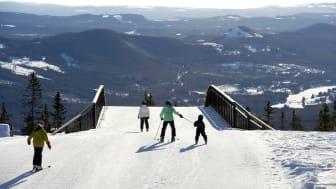 Martinsons vill inspirera under Alpinmässan