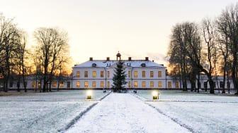 Årets julklapp: firande på landet