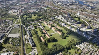 Sege Park1. Bojana