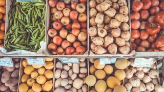 Mät mer – och minska matsvinnet
