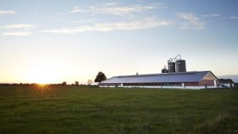 Generation Z vill värna om det svenska jordbruket