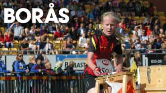 Besöksstatistik, Borås - sommar och höst 2015