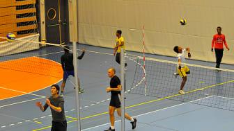 Startade volleybollträning för nyanlända ungdomar