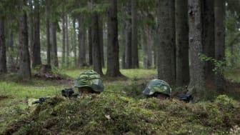 Härnösands kommun kommenterar beskedet om nytt regemente till Sollefteå