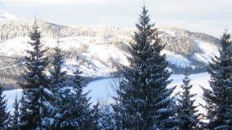 Den 1 december är det dags att byta till vinterdäck