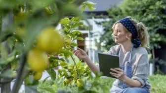 """SAP har for første gang valgt at præsentere en integreret årsrapport som tydligt viser hvordan arbejdet med bæredygtighed bidraget til forretningsresultaterne - """"SAP Integrated Report 2018""""."""