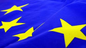 Skiljeboskolans firande av Europadagen!