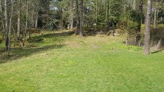 I skogholtet inn mot hinderløypa på Vestli kan det snart komme lyktestolper.