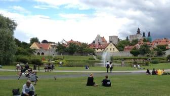 Svensk Försäkring i Almedalen: Klimat, trygghet och pension