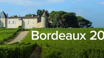 """Sedan 2004 har Winefinder erbjudit svenska vinkonsumenter att köpa Bordeauxviner """"en primeur""""."""