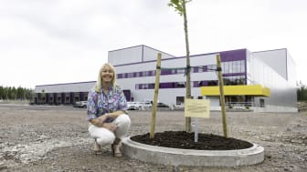 """""""Instead of cutting a ribbon, we choose to plant a tree, an oak that can grow together with the family and the company. A warm greeting to former and future generations from us in the 3rd, 4th and 5th generation,"""" says Katherine Löfberg."""