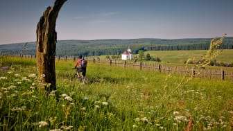 Radregion_Erzgebirge_bei_Kalek RG_2285 Tourismusverband_Erzgebirge_e.V. René Gaens
