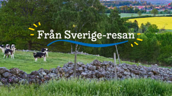 Med Från Sverige-resan vill vi tillsammans med Land uppmärksamma den svenska maten, drycken och växterna för att inspirera och öka kunskapen om såväl bredden som lokala specialiteter, innovationer och svenska mervärden..