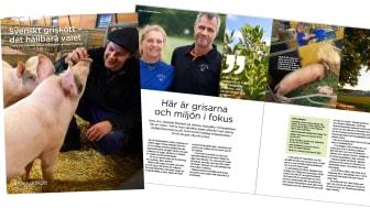 I rapporten får läsaren kunskap  om svensk grisuppfödning, från avel till foder, djuromsorg, kretslopp och miljö. Två gårdsbesök har gjorts, hos Ingemar Olsson i Värmland och Jeanette Blackert i Östergötland.