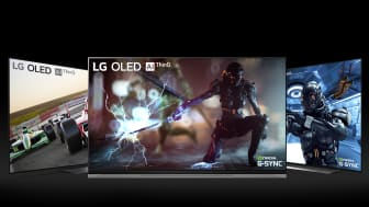 G-SYNC on LG OLED TV E9 C9 B9_4