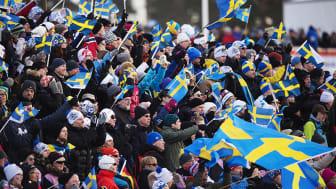 Folkfest i Falun under VM 2015. Foto: Bildbyrån.