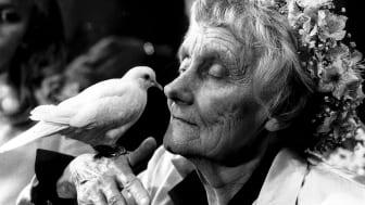 Astrid med duva på 80-årsdagen