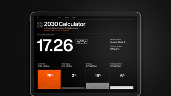 2030 Calculator-1