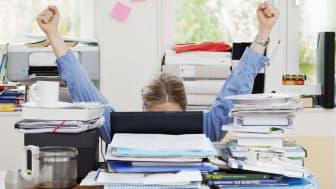 Myndigheten för yrkeshögskolan har beviljat fler utbildningsplatser än någonsin tidigare. Foto: Scandinav