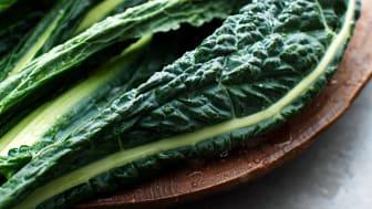 Hur ska vi som livsmedelsföretag kunna ställa om till en mer hållbar livsmedelsproduktion?