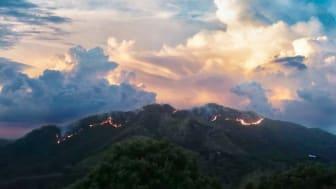 Skovbrandene i Sierra Nevada de Santa Marta, der er hjemfor mange oprindelige folk, er ofte påsatte. Foto: Civil Defence Santa Marta, april, 2020