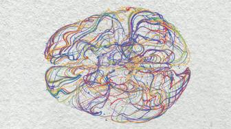 Hjernemysterier – moderne nevrovitenskap i en ledelseskontekst