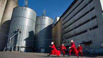 Danskompaniet Catapult gör dansföreställningar i miniformat.