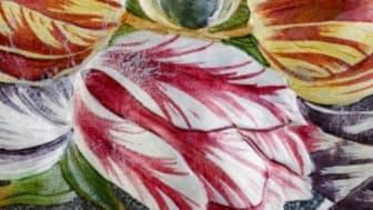 På 1600-talet var tulpanen den mest populära och lyxigaste blomman.