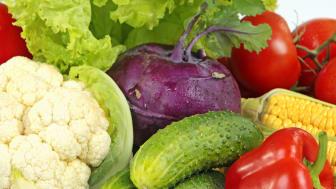 Mat fortsatt viktig del i arbetet för hållbar utveckling