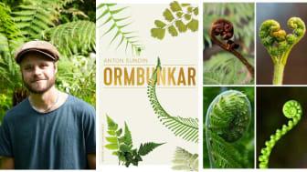 Vilken utmärkelse! Årets Trädgårdsbok 2020  - Ormbunkar av Anton Sundin