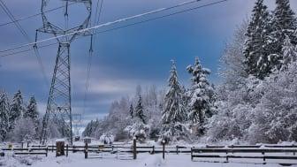 Kommer vintervädret att fortsätta? // veckans kommentar om elmarknaden v. 2. 2021