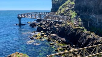 Stunning views from The Gobbins