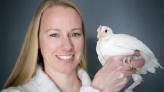 Hanne Løvlie, biträdande professor vid Linköpings universitet, studerar djurs beteende. Foto: Anna Nilsen/LiU
