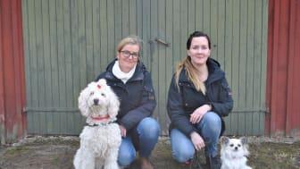 Terapihundarna Disa och Alva kammade hem bästa framsteg 2019. Hundförarna heter Carina Gidvall (Disa) och Maria Spångberg (Alva).