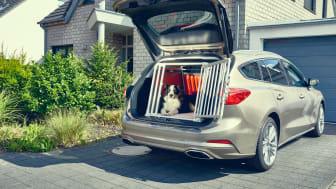 Menneskets bedste ven – men ikke i bilen?