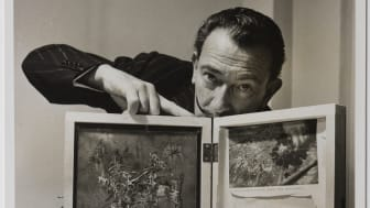 Salvador Dalí valokuvaajanaisten silmin