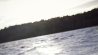 Torka och vattenbrist har ställt till med stora problem på många håll i landet på senare år. Gotland, Blekinge, Skåne och Kalmar län är regioner som har drabbats hårdast av torkan. Foto: Maja Kristin Nylander
