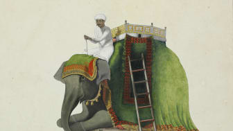 Indian drawing from Benjamin Wolff's collection