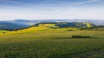 Sjätte rekordresultatet i rad för Tysklands incomingturism