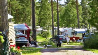 Rekordbeläggning på Sveriges campingplatser