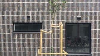 MAU_Arkitektur, visualisering och kommunikation_Jakten på den gröna och täta staden. Burén & Cronwall