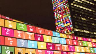 Viktiga steg mot en global hållbar utveckling