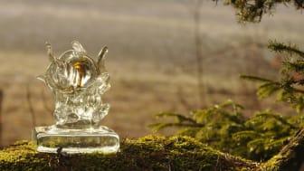Mottagaren av Naturvårdspriset får statyetten Radicula. Foto: J Samuelsson